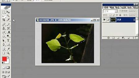 Photoshop从头学起第06集