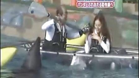 天才!志村动物园 20081227-a 相叶雅纪 岚