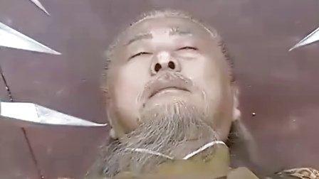 樊梨花 20 大结局