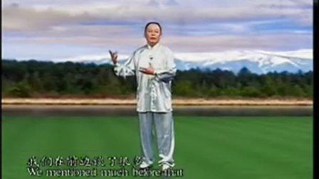 李德印88式太极拳09