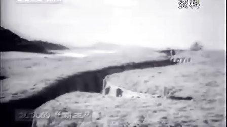 【鲜为人知的战争】二战珍闻录(20)复仇的霸王(上)