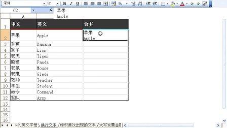 Excel函数与公式实战技巧精粹视频教程[Excel Home]B07_活用Excel文本函数