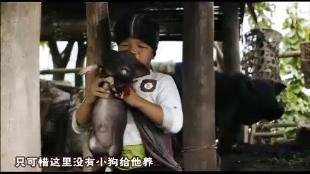 【泰国电影】奇迹发生的地方  中字