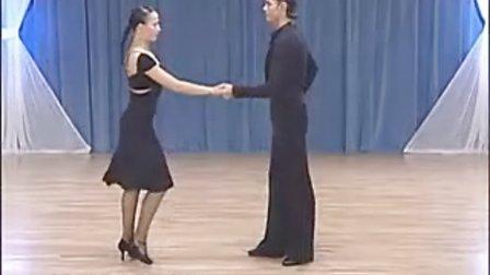 斯拉维克与卡琳娜激情拉丁舞基础2