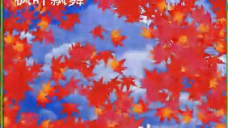 枫叶针织步骤图解