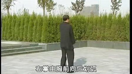 侯氏太极拳架67式-白鹤亮翅