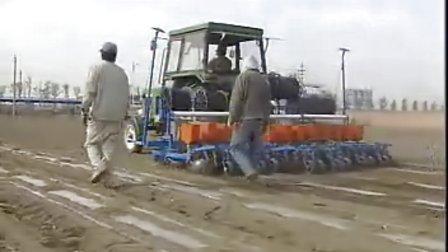 10-11-12 全國 實用技術——新疆膜下大豆栽培技術