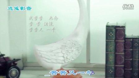 龙梅子 - 泪满天