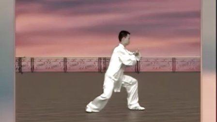 陈思坦24式太极拳