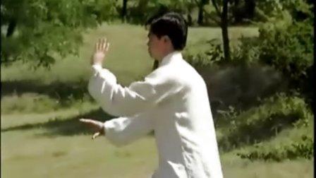八十八式杨式太极拳 上