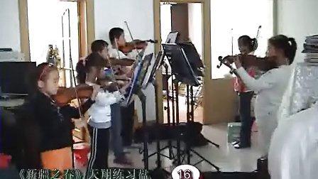 天翔小提琴演奏厅教学练习盘系列 新疆之春图片