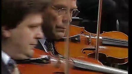 柏林爱乐乐团森林音乐会图片