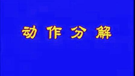 中华武术 - 虎鹤双形拳