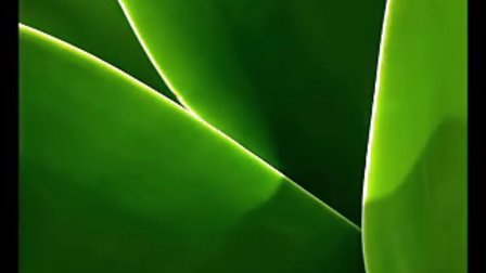 《空灵唯美》 班德瑞 天籁之音   集与太极背景音乐的純音乐 精彩視频及迷人精彩音乐清晰版avi