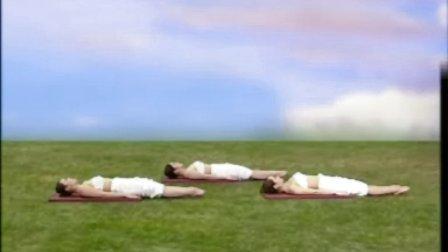 瑜伽养生在家练