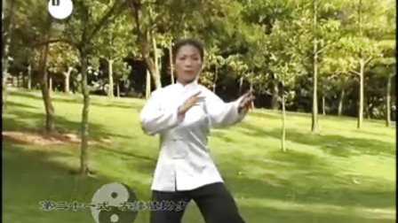 杨氏太极拳85式分解信条刺客教学-播单-优酷视频成员奥德赛击杀动作神教图片