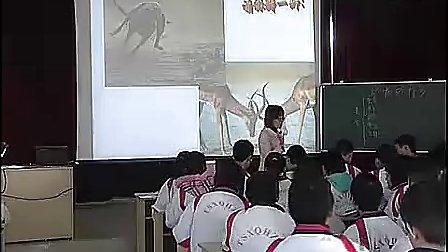 初二生物优质课展示 《动物行为》马老师