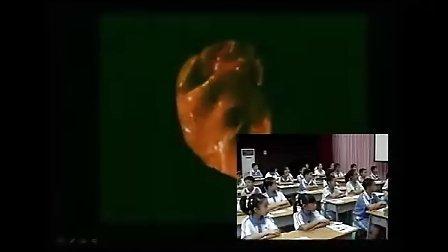 小学五年级科学优质课视频《运动与心跳》_潘翠君