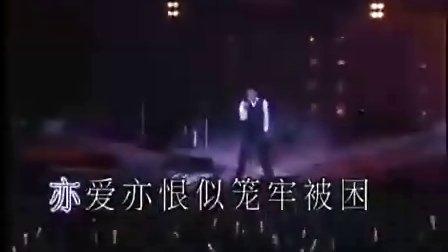 刘德华演唱会图片