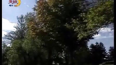 肯尼基萨克斯