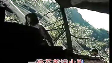 童丽梅花泪简谱歌谱