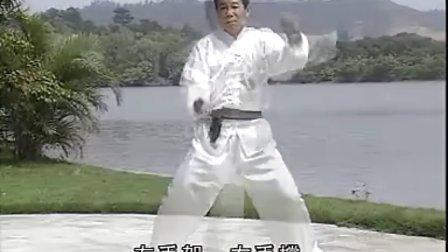 专辑:虎鹤双形拳