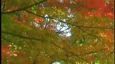 (清国晓娜) 琵琶演奏曲----- 天山之春