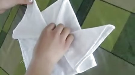 餐巾折花大全------盘花