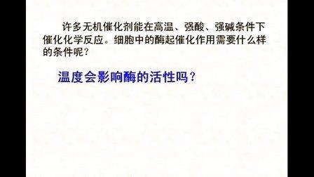 汉水丑生  高中生物  必修一  酶(二)