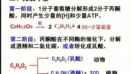 汉水丑生  高中生物 必修一 细胞呼吸