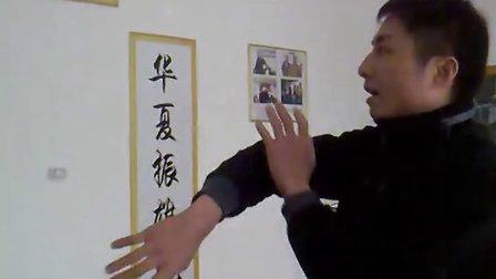 解说咏春拳小念头及其它招式(一)图片