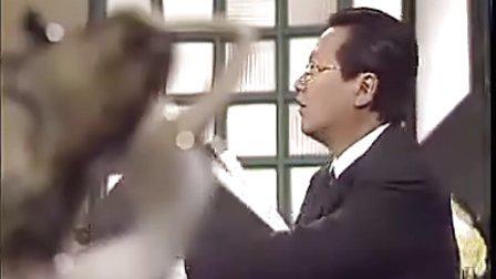 【港剧国语】麻辣字幕【45不可文律师清晰版电视剧非你集中歌曲图片