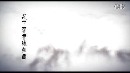 湖南绿力苗木配送,供应各种苗木,中央电视台片头广告