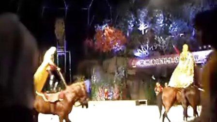 淹城野生动物园——马戏表演