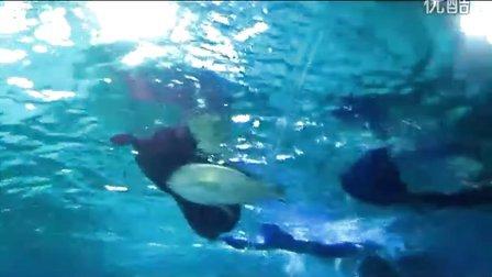 壁纸 海底 海底世界 海洋馆 水族馆 448_252