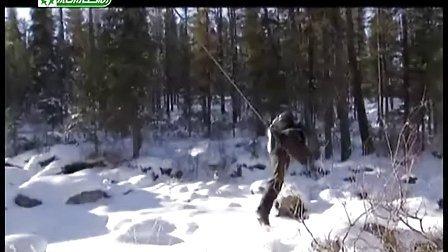 荒里求生怎么捕捉动物