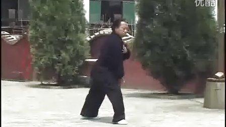 戴氏心意拳之心意神功2_霍永利