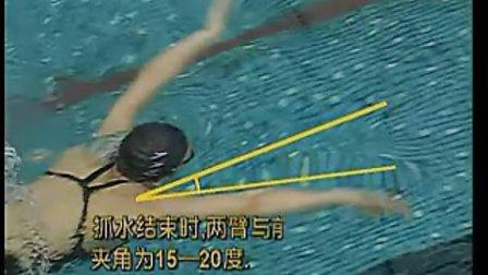 韩雪演示的蛙泳划臂技术