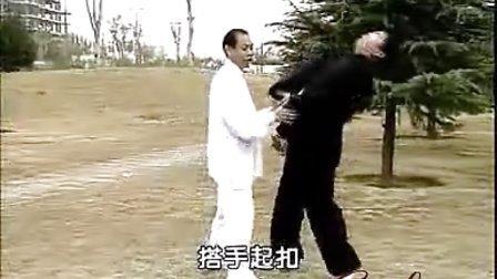 赵堡太极拳侯春秀拳法推手与擒拿教学(5)