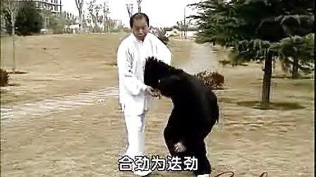 赵堡太极拳侯春秀拳法推手与擒拿教学(7)