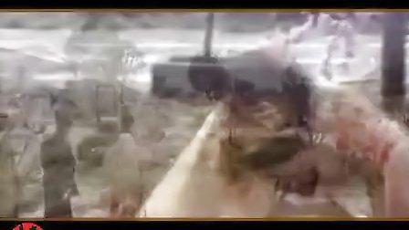 古装美女mv 舞蹈  (清晰)-0003