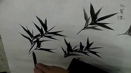 竹子的解剖结构图