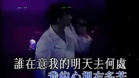 刘德华-天意(演唱会)图片