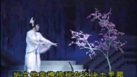 沪剧视频:沪剧-龙凤花烛·月下思
