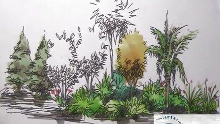 马克笔手绘教程树
