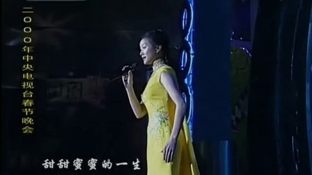 歌曲 你好吗(00)宋祖英(2000年央视春晚)