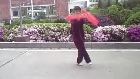 三届太极拳锦标赛---袁庆华56式太极拳-舞蹈甄嬛传冰上体育几集图片