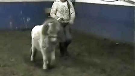 ponyride-播单:《小马骑美女》-在线播放-优酷硕士博美女最微图片
