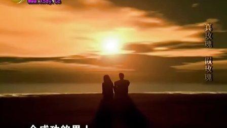 愛看影院_小伍影視_老梁觀世界20120214_真玫瑰,假玫瑰