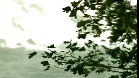 刀郎:情人.flv视频